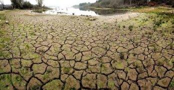 Mitigación, adaptación y sumideros de CO2, claves regionales para frenar el cambio climático