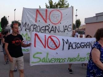 La Plataforma No a la macrogranja en Pozuelo y Argamasón se suma a la manifestación en coche en contra de la ganadería industrial