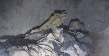Las momias de la cripta de Liétor: 2 siglos de historia venciendo el paso del tiempo