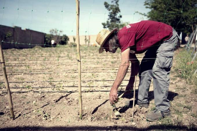 Agricultura ecológica e inserción sociolaboral: las claves de 'Vivero Llanero'