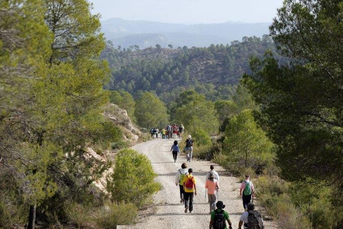 Ruta junto al río Cabriel, propuesta senderista para conocer el entorno de Alborea