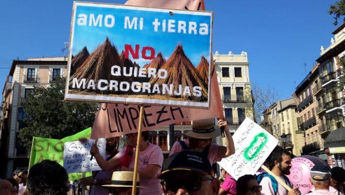 Colectivos de Albacete se unen a la manifestación de Cuenca para pedir el 'San Martín' de la industria porcina