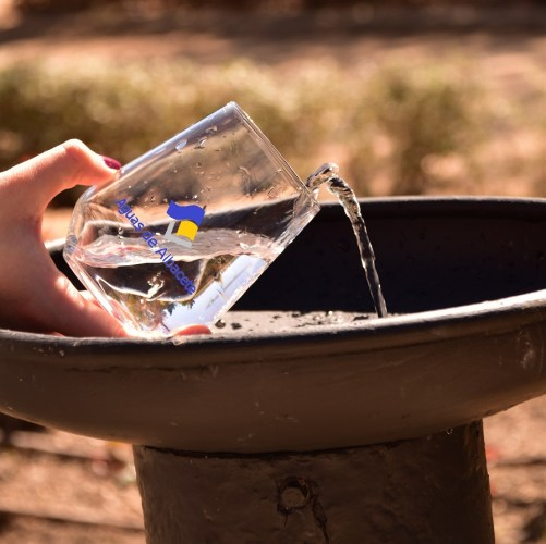 Más de 12.500 análisis anuales para garantizar la calidad del agua del grifo de Albacete