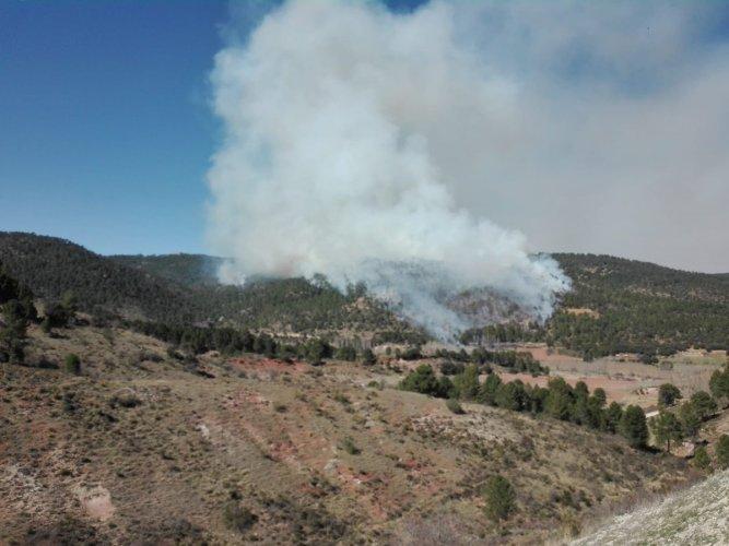 El incendio forestal de Paterna del Madera está controlado