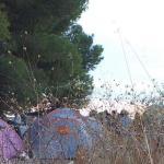 Colectivos de Albacete insisten en que haya opciones para albergar a los temporeros este verano