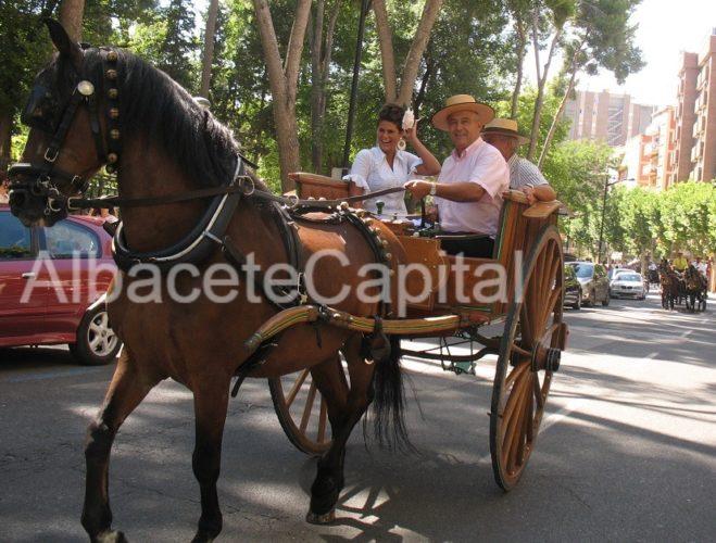 caballos albacete (2)