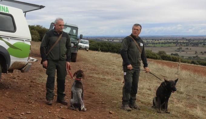 patrulla canina 1