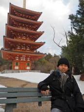Pagoda Saju (1)