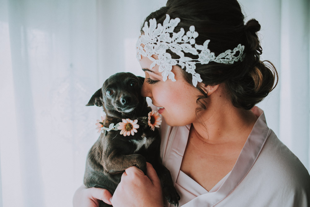 vestir al perro el dia de tu boda