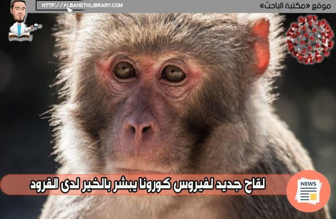 لقاح جديد لفيروس كورونا يبشر بالخير لدى القرود – الخطوة التالية البشر