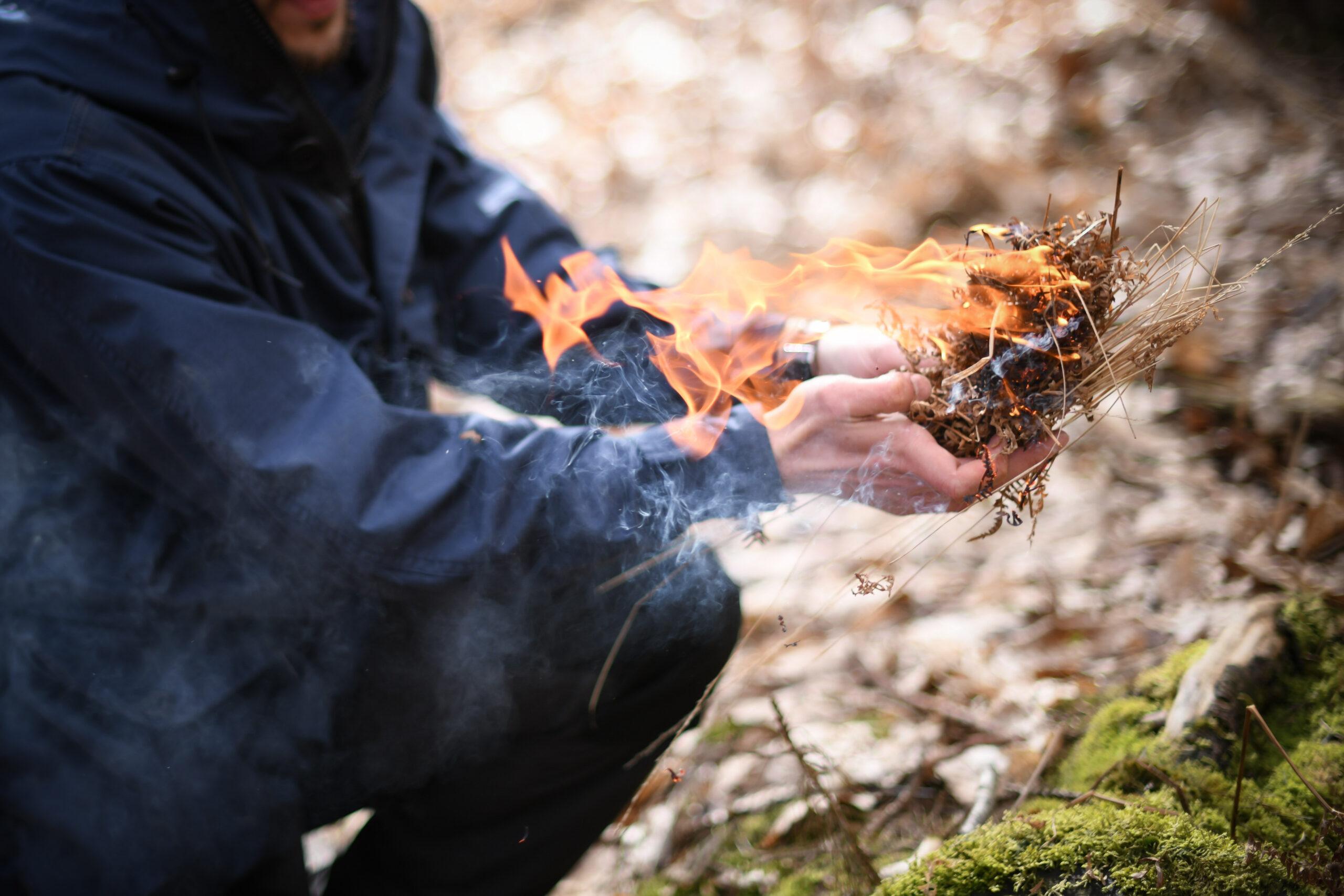 Le Nid : Berceau des flammes
