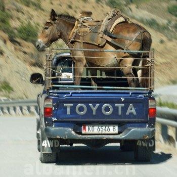 Autofahren in Albanien