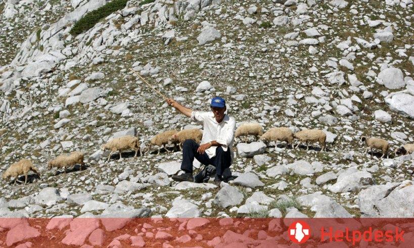 Helpdesk Albanien