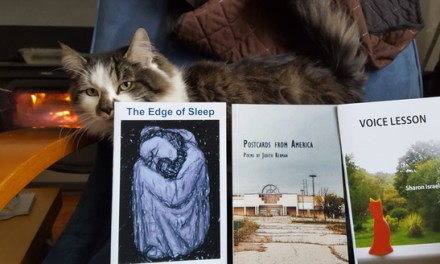 New Books from Post Traumatic Press