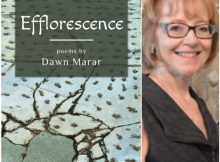 Dawn Marar - Efflorescence