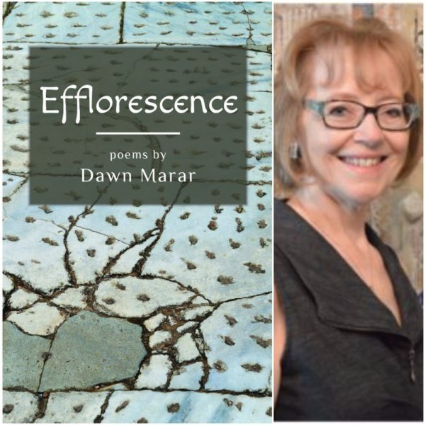 "Dawn Marar Announces Her New Poetry Chapbook, ""Efflorescence"""