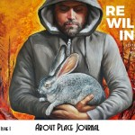 Call For Submissions: About Place Journal
