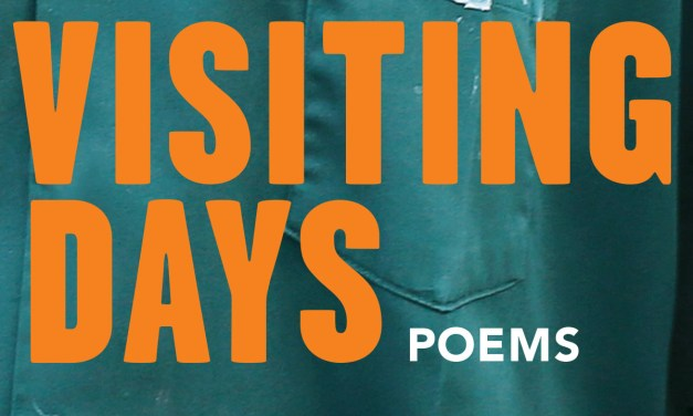 "Review: ""Visiting Days"" by Gretchen Primack"