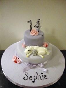 14Th Birthday Cake Girls 14th Birthday Cake Lisa Jane Fothergill Flickr