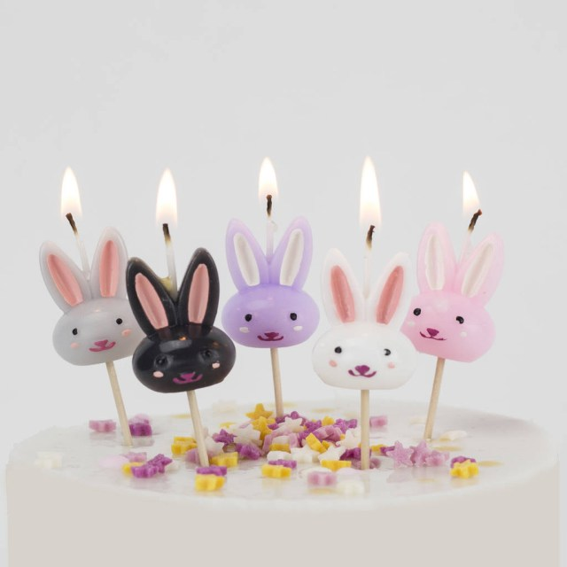 Bunny Birthday Cake Rabbit Cake Candles Birthday Bunny Easter We Love To Create