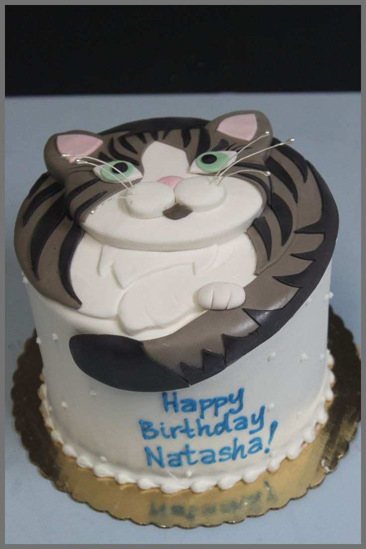 Cat Cakes For Birthdays Birthday Cake Amazing Decoration Ideas Best