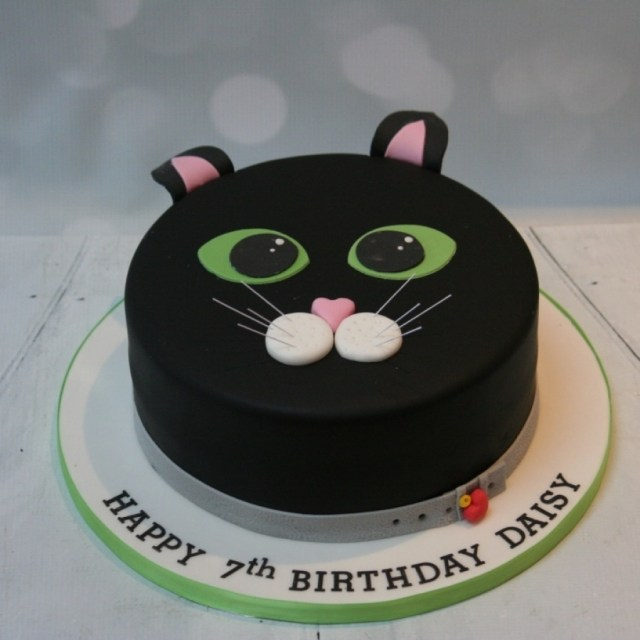 Cat Cakes For Birthdays Kids Birthday Cakes Made To Order Sheffield Uk