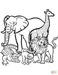 Coloring Pages Animals African Animals Coloring Pages Free Printable Pictures