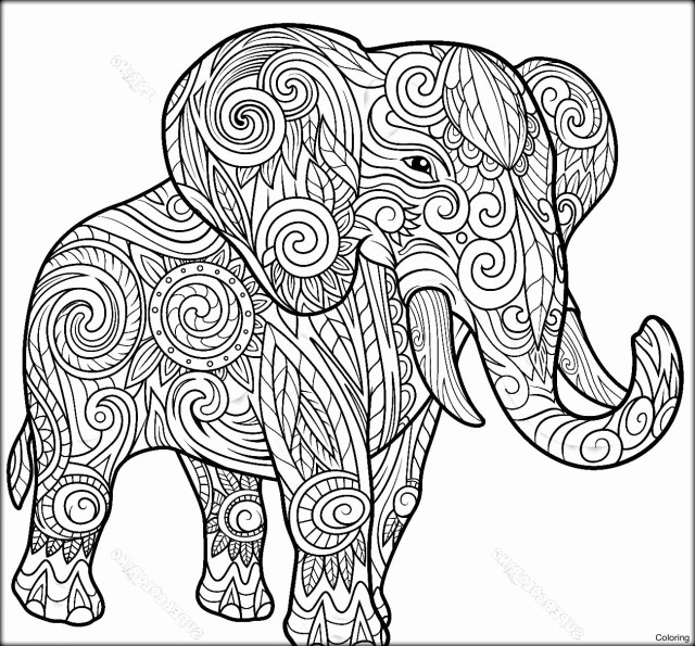 Elephant Adult Coloring Pages Coloring Page Fantastic Elephant Adult Coloring Pages