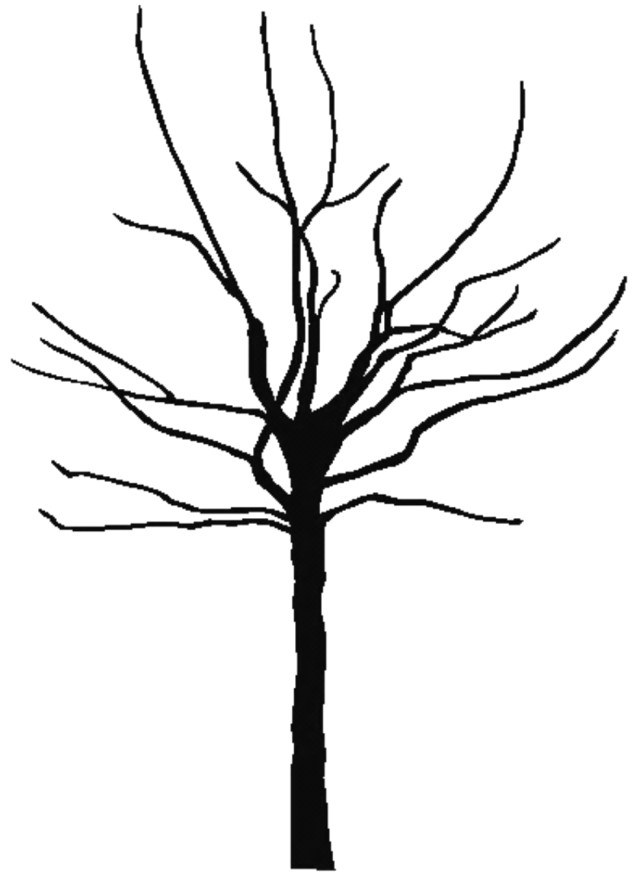 Fall Tree Coloring Pages Free Printable Pictures Of Trees Download Free Clip Art Free Clip