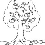 Fall Tree Coloring Pages Free Printable Tree Coloring Pages For Kids Cool2bkids