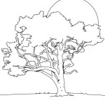 Fall Tree Coloring Pages Lime Tree Coloring Page Source 8dk In Tree Coloring Page Coloring