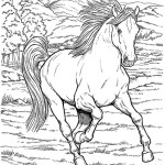Free Horse Coloring Pages Coloring Pages Printable Coloring Pages For Kids Horse Fence