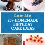 Homemade Birthday Cake Recipes 24 Homemade Birthday Cake Ideas Easy Recipes For Birthday Cakes
