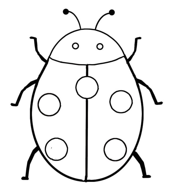 Ladybug Coloring Page Ladybug Coloring Sheet Kleobergdorfbibco