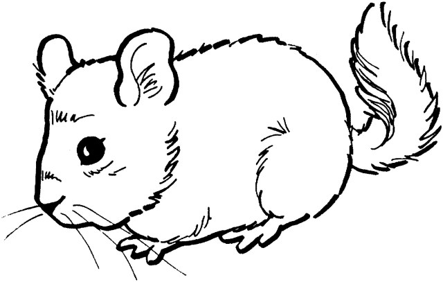 Mouse Coloring Page Mouse Coloring Page Free Printable Mouse Coloring Pages For Kids