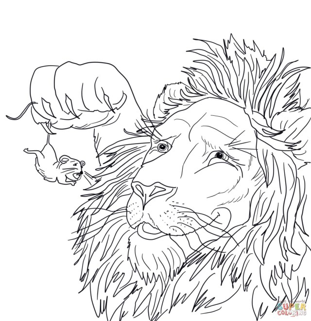 Mouse Coloring Page The Big Lion Caught A Tiny Mouse Coloring Page Free Printable And