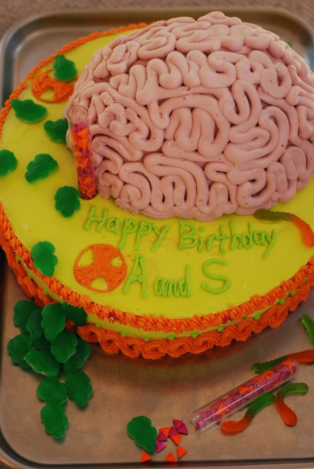 Science Birthday Cake Chickenville Mad Scientist Birthday Party