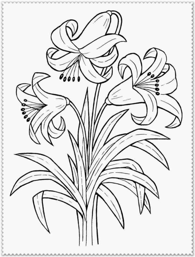 Spring Flowers Coloring Pages Many Spring Flowers Coloring Page For Kids Seasons Pages Fantastic