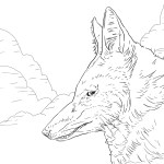 Wolf Coloring Pages For Adults Wolf Coloring Pages Free Intricate Werewolf Page Best Coloring Ideas