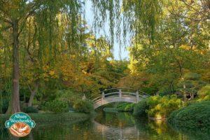 Fort Worth Botanical Gardens Moon Bridge