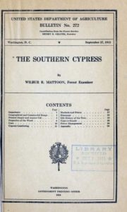 The Southern Cypress Mattoon