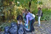 Ecologizare la grădina botanică