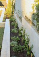 Progettazione ed allestimento aiuole di area verde ad uso ufficio