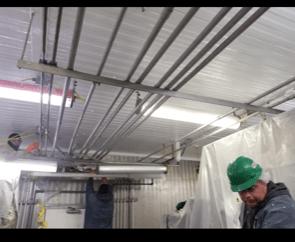 food plant ceiling