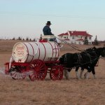 Alberta Carriage Supply