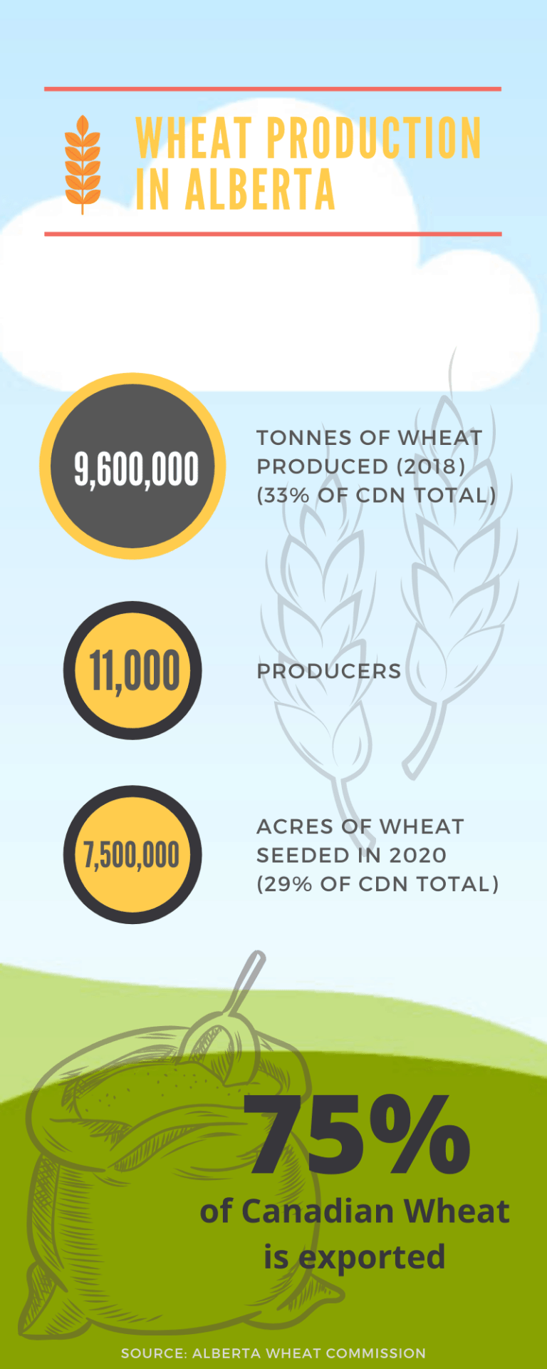 wheat production infographic