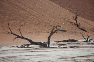 Namibia_1-27
