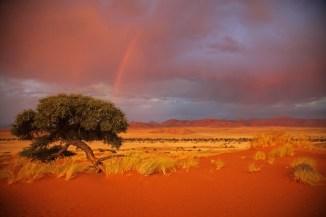 Namibia_1-33