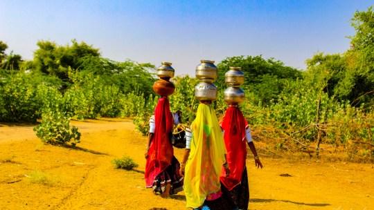 Parte VII: El desierto del Thar