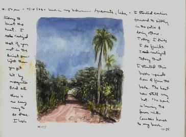 Sketchbook Q 10 - Finca Santa Felipa, Agramonte, Cuba